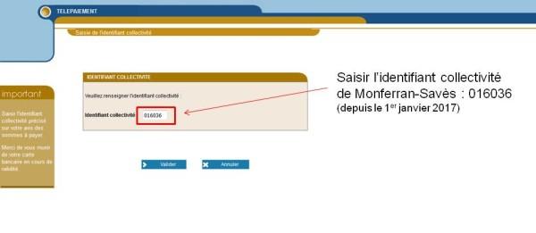 Etape 2 : sur tipi.budget.gouv.fr saisissez l'identifiant 016036