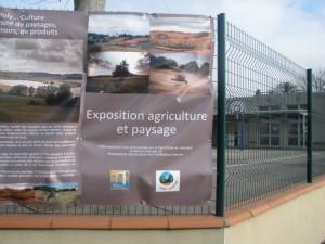 2017-05-01_Expo-biodiversite-Monferran-Saves-02_BD