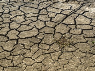 drought-1745154_1280