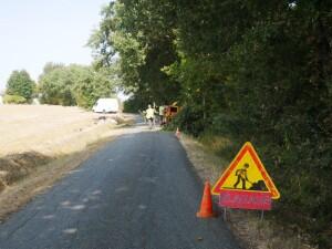 2020-09-17_Elagage-rte-moulin-Ayguebere-Abat-Elag-Guerin-03